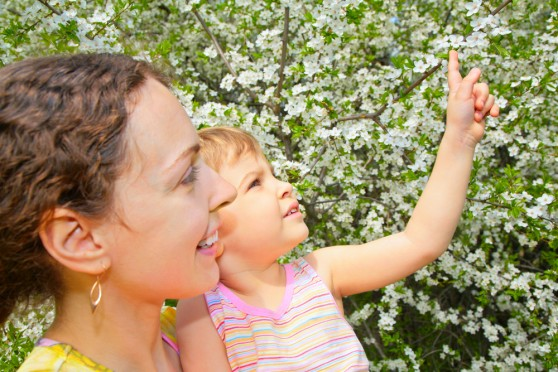 Frases Y Poemas Para El Día De La Madre Ala